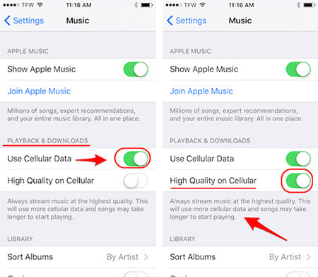 adjust apple music quality