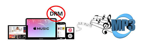convert apple music drm m4p to mp3