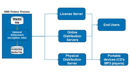 Overview of the Top 3 DRM Technologies