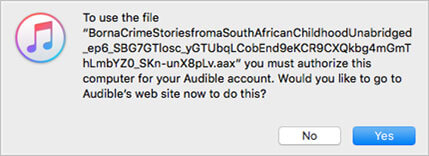 How Do I Import Audible Audiobooks to iTunes