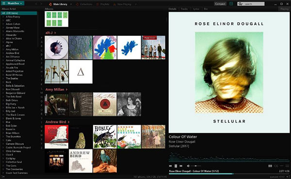 Top 10 Best Audio Player for Windows