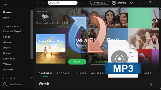Top 5 Best Spotify Music Converters for Downloading Spotify Songs